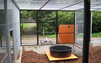 Tijdelijke dierenopvang Stichting AAP